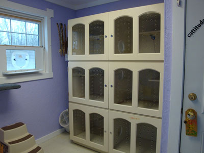 Cattery-1-3-10